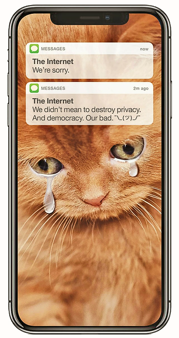 'Internet cat apology' - New York Magazine.